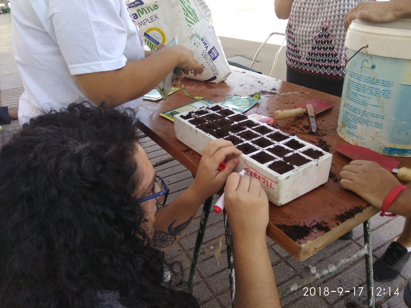 foto 3 Actividad Torremejía