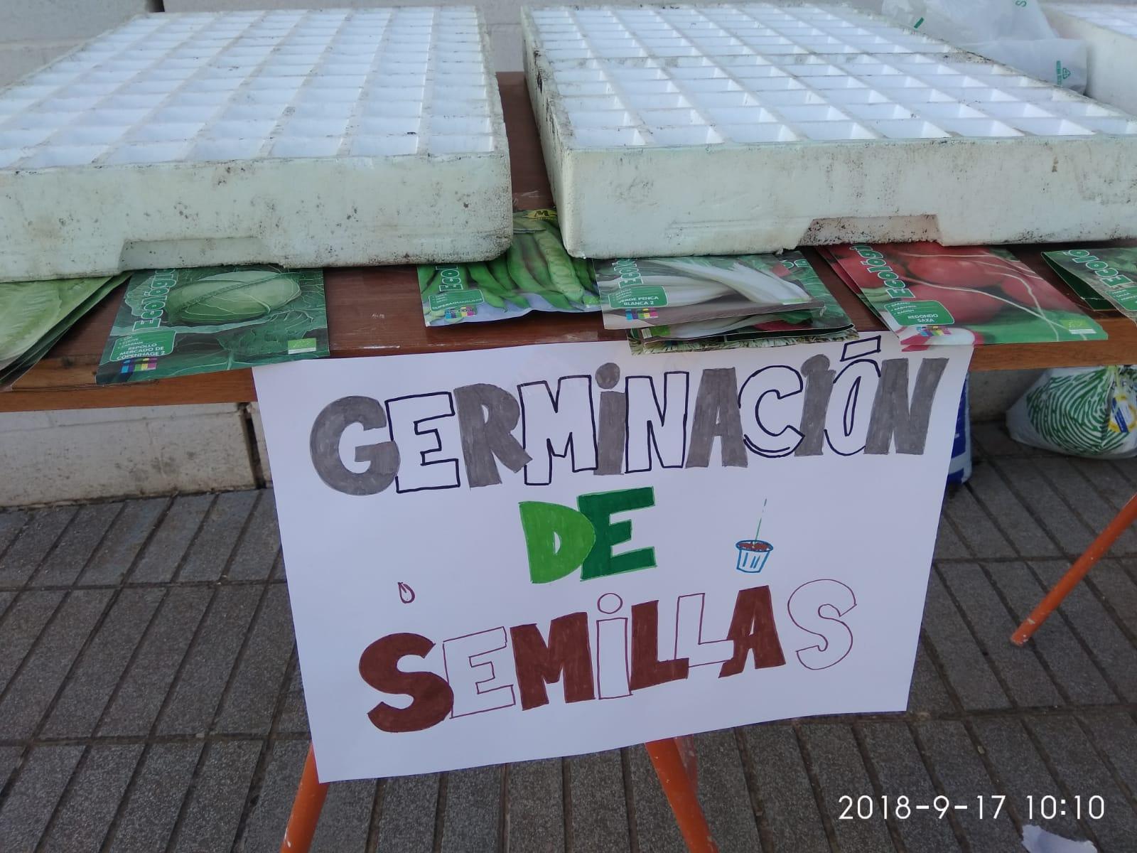 foto 4 Actividad Torremejía