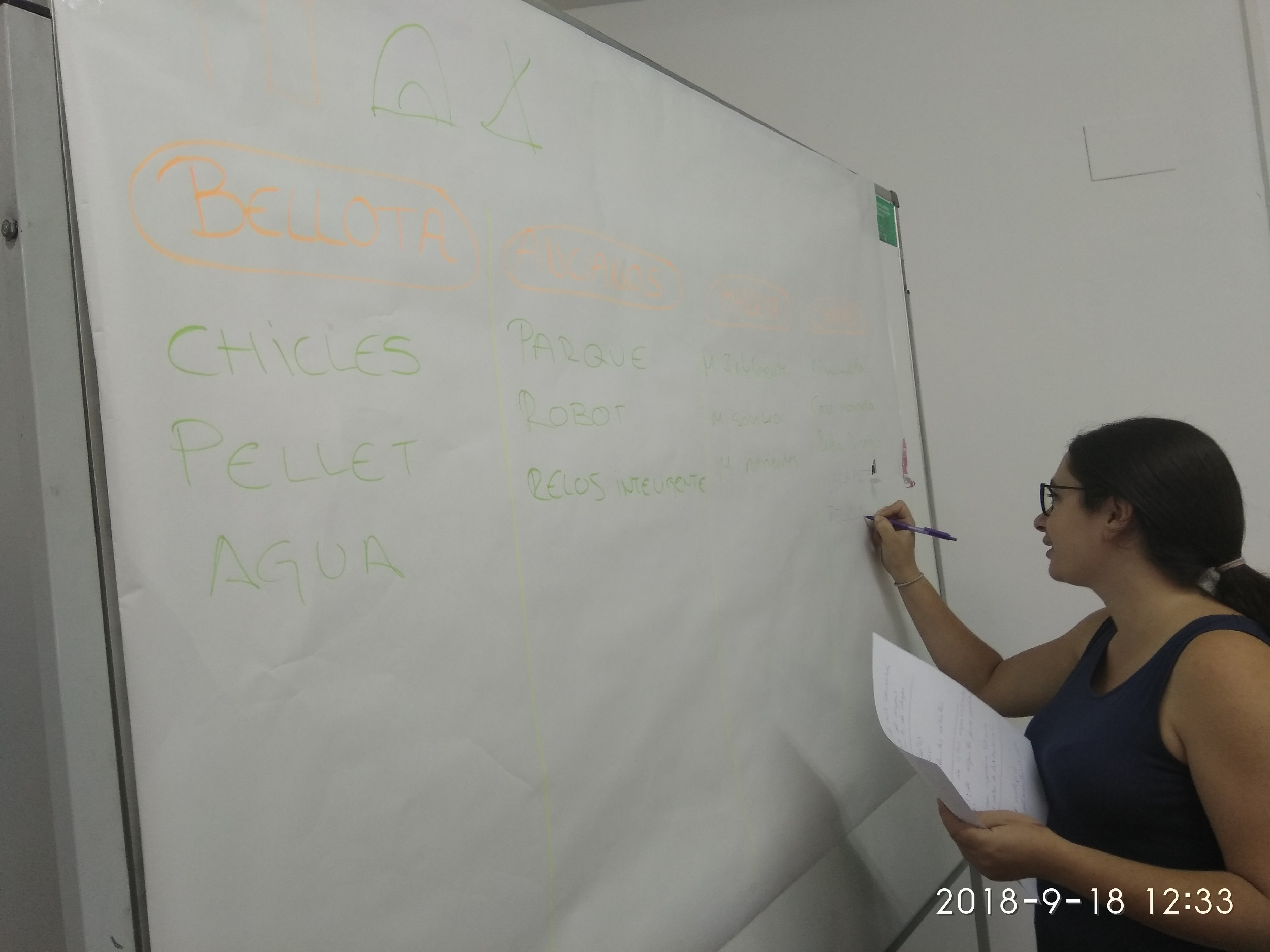 foto 3 emprendimiento Zafra