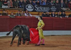 Manuel Perera triunfa en Olivenza