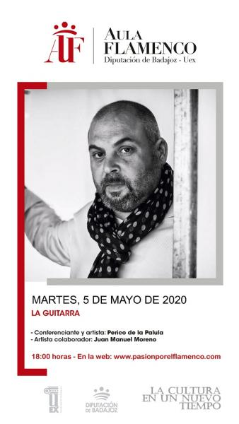 Imagen del Evento La guitarra, protagonista de la 2ª conferencia online del Aula de Flamenco de la Diputación