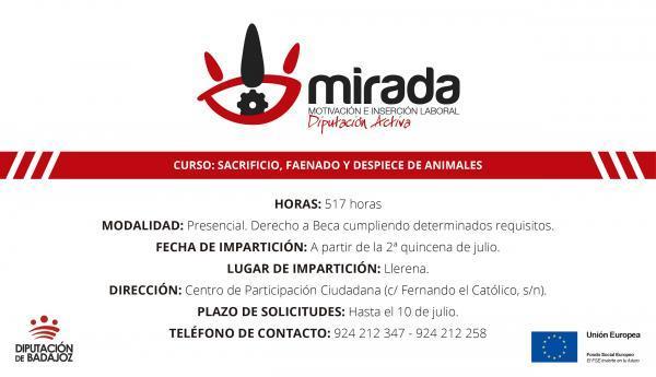 Abierto el plazo de presentación de solicitudes para el curso de sacrificio, faenado y despiece de animales en la localidad de Llerena