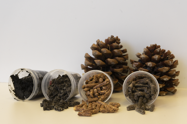 Imagen de la noticia El proyecto IDERCEXA mezcla restos vegetales con lodos de depuradora para obtener biocombustible