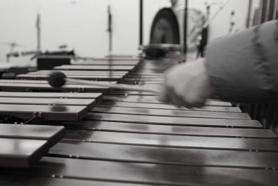 Imagen de la noticia: Alumnos de percusión del CSMB profundizan en el c ...