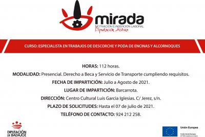 Imagen de la noticia: La Diputación de Badajoz abre el plazo de solicit ...
