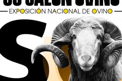 Imagen de la noticia: La Diputación de Badajoz ha participado en la sub ...