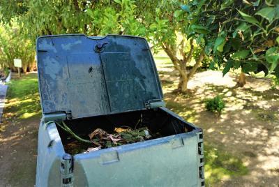 Imagen de la noticia: El compostaje comunitario y doméstico llega a La  ...